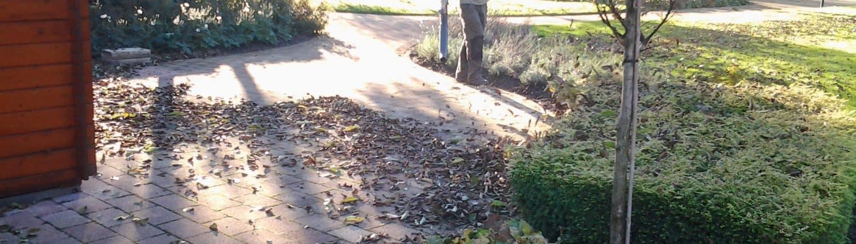 onderhouden van tuinen - de knegt hoveniers