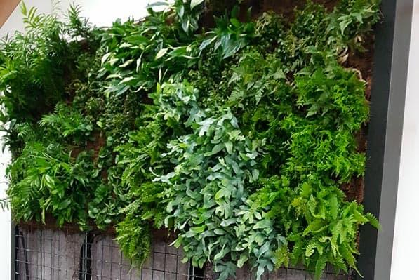 Verticale tuin aanleggen binnen of buiten